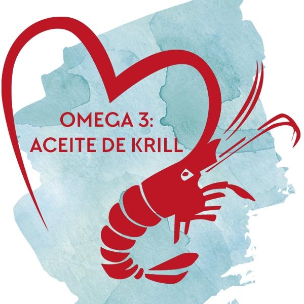 imagen-destacada-omega-3